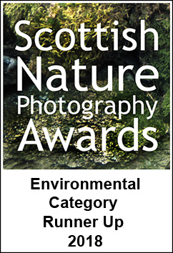 SNPA third place in environmental category