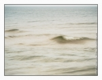 Photo of Making waves at Saugatuck State Park